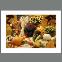 THKSG – 003 Autumn Bounty
