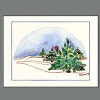 326C Trees in Winter