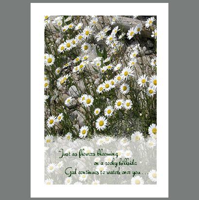 GW-007 Flowers of the Field