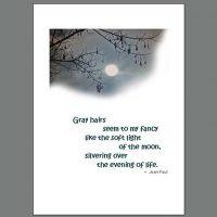 Life-011 Wisdom Moon