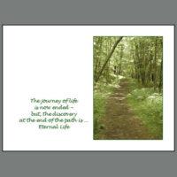 SYMP-002 Path of Life