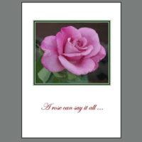 THK-005B Pink Rose ~ Thank You