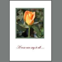 THK-005C Yellow Blush Rose ~ Thank You