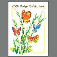 486  Orange Butterfly Birthday