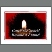 SPC-019  Catch the Spark