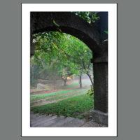 MH-00105 View Through the Grape Arbor Arch