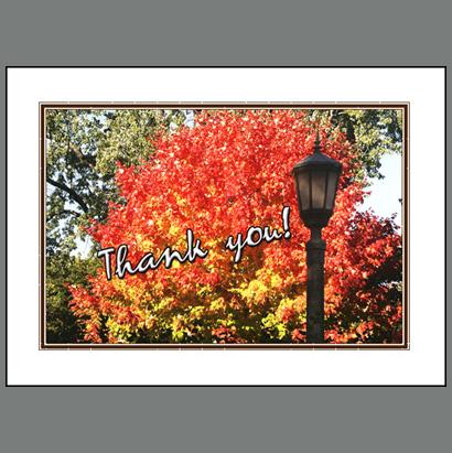 THK-002 Autumn's Blazing Maple
