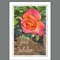 JUB-016 Jubilee Rose