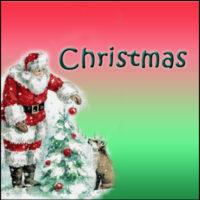 Christmas Splendor