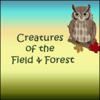 Creatures of the Field & Forest