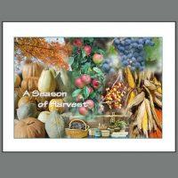 THKSG – 006 Season of Harvest